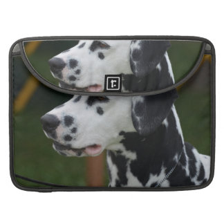 Dalmatian with Spots MacBook Pro Sleeve