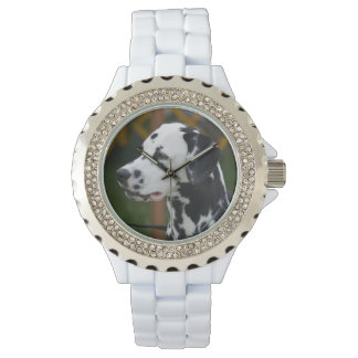Dalmatian with Spots Watch
