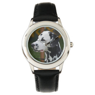 Dalmatian with Spots Watches