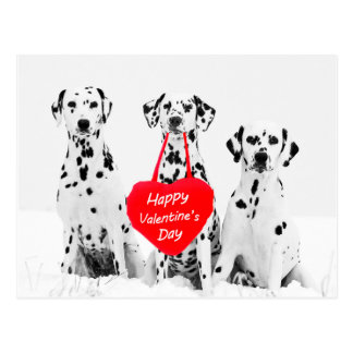 Dalmatians Dog Heart Happy Valentine's Day Postcard