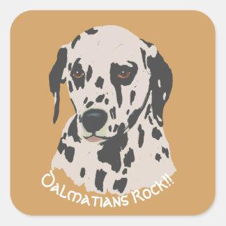 Dalmatians Rock!! on old gold Square Sticker
