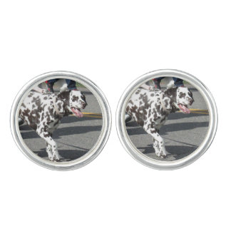 Dalmation Cuff Links