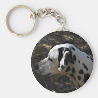 Dalmation Dog Portriate Basic Round Button Keychain