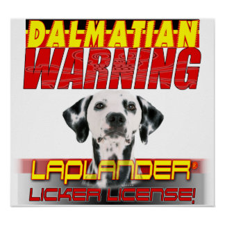 DALMATION  WARNING LAP LANDER LICKER LICENSE POSTER