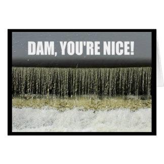 Dam, You're Nice! Thank You Card