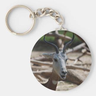 Dama Gazelle Keychain