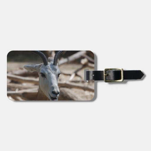 Dama Gazelle Tag For Bags