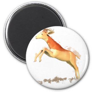 Dama Gazelle Refrigerator Magnets