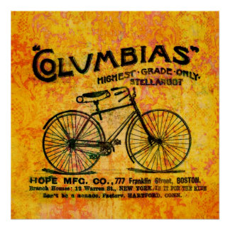 Damask Read Between the Lines Vintage Bicycle Poster