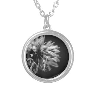 Damp Dandi Silver Plated Necklace