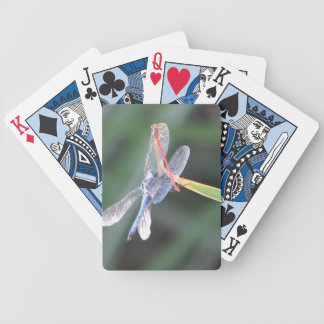 Damsel Fly Perched on Dragonfly Bicycle Playing Cards