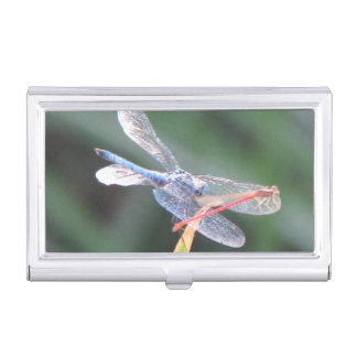 Damsel Fly Perched on Dragonfly Business Card Holder