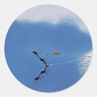Damselflies reflection round sticker