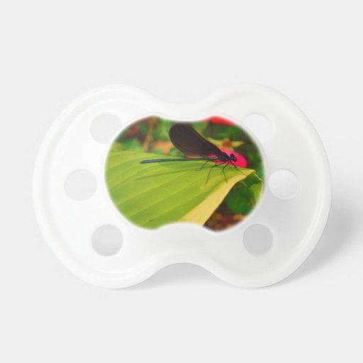 Damselfly and rose baby pacifiers