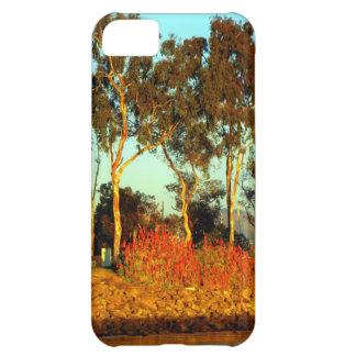 Dana Point Marina iPhone 5C Case