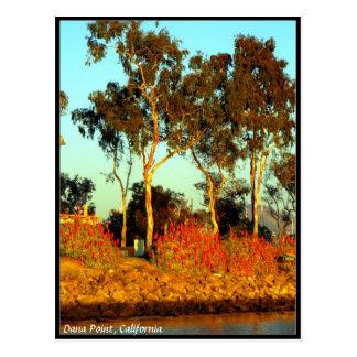 Dana Point Postcard