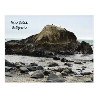 Dana Point Tidepool Rock Postcard
