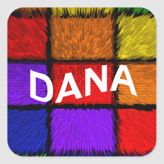 DANA SQUARE STICKER