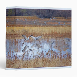 Dance of Sandhill Cranes Avery Binder