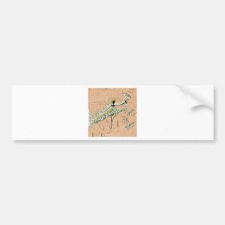 DANCER AND DRAGONFLIES 27 BUMPER STICKER