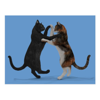 Dancing Cats Postcard