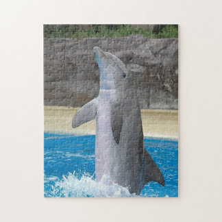 Dancing Dolphin Puzzle