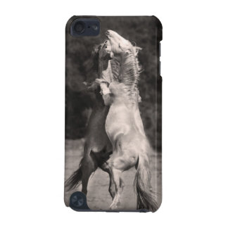 Dancing Stallions iPod Touch (5th Generation) Case