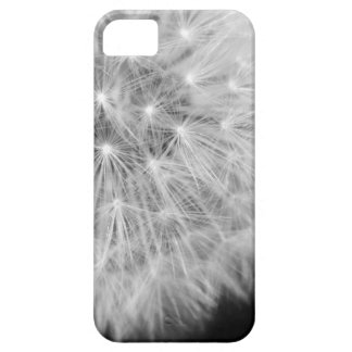 Dandalion iPhone 5 Cover