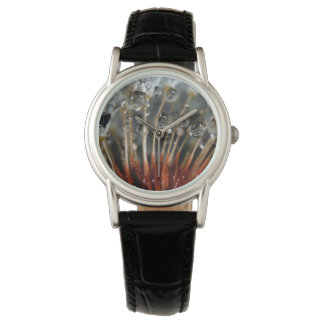 Dandelion and water drops, CA Wrist Watches