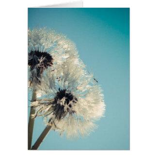 Dandelion Blue Sky Card