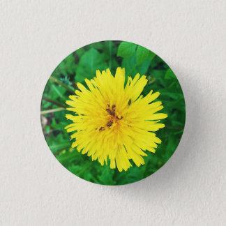 Dandelion & Bugs - Badge 1 Inch Round Button