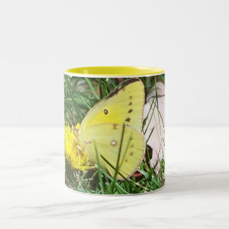 Dandelion Butterfly Two-Tone Mug