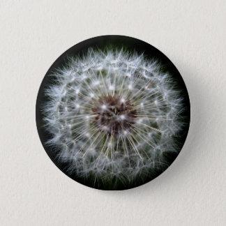 Dandelion Clock badge/button 2 Inch Round Button