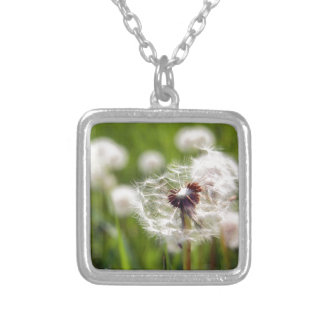 Dandelion clock silver plated necklace