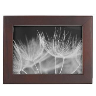 Dandelion Closeup in Black White Keepsake Box