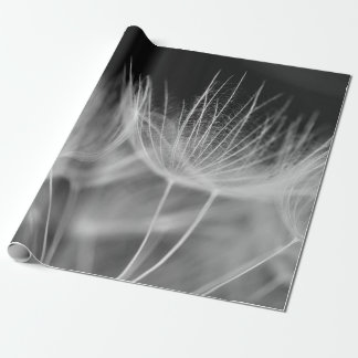 Dandelion Closeup in Black White Wrapping Paper