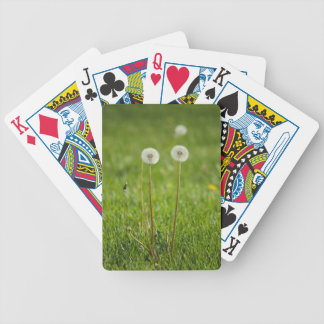 Dandelion Duo Bicycle Playing Cards