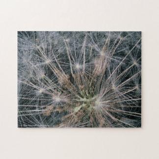 Dandelion Fireworks Jigsaw Puzzle
