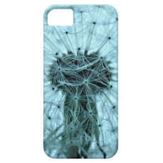 Dandelion Flower iPhone 5 Cases