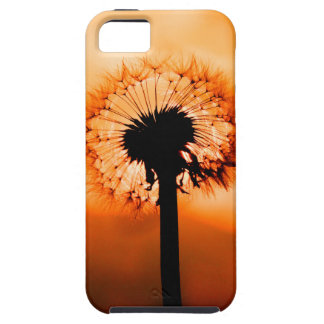 Dandelion Flower (Tooth of Leon) iPhone 5 Cases