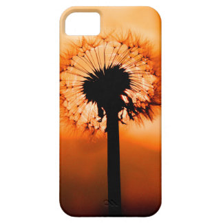 Dandelion Flower (Tooth of Leon) iPhone 5 Covers