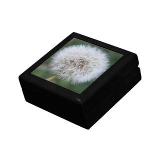 Dandelion Giftbox Gift Box