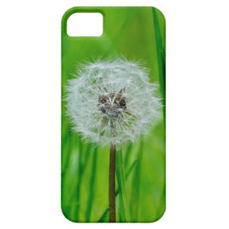 Dandelion in the Grass - iPhone 5 Case