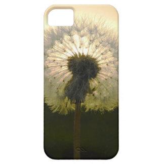 dandelion in the sun iPhone 5 case