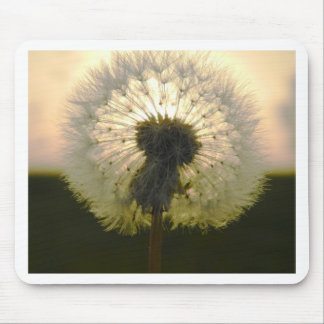 dandelion in the sun mouse pad