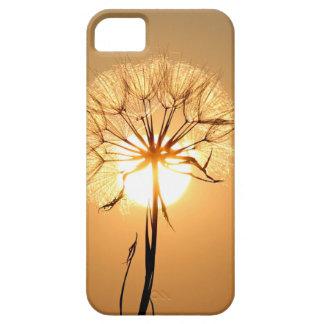 dandelion iPhone 5 cover