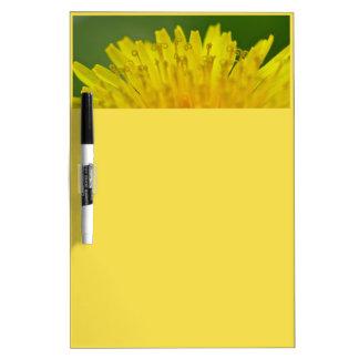 Dandelion, Löwenzahn, Pusteblume Dry Erase Board