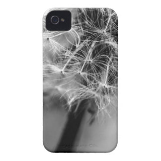 Dandelion Monochrome iPhone 4 Case-Mate Case