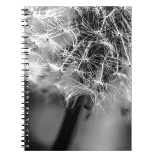 Dandelion Monochrome Notebook