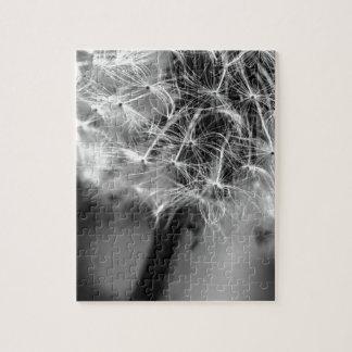 Dandelion Monochrome Puzzles